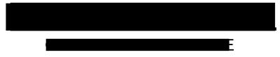 Luis Coronel Online store Logo